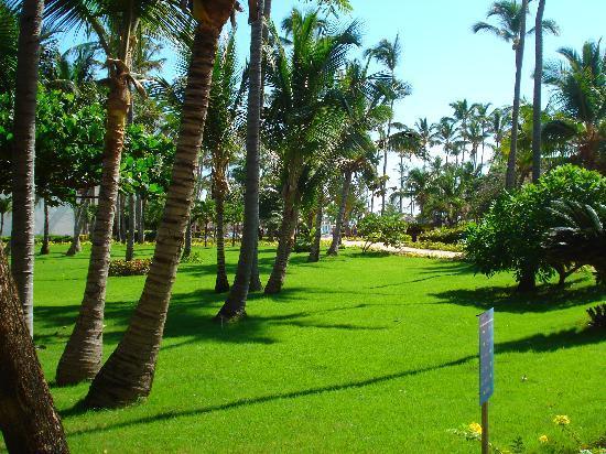 VIK Hotel Arena Blanca : cote jardin