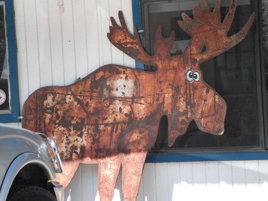 The Cross-Eyed Moose Cafe: moose