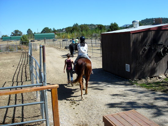 Baldwin Lake Stables : Scary at first but fun overall