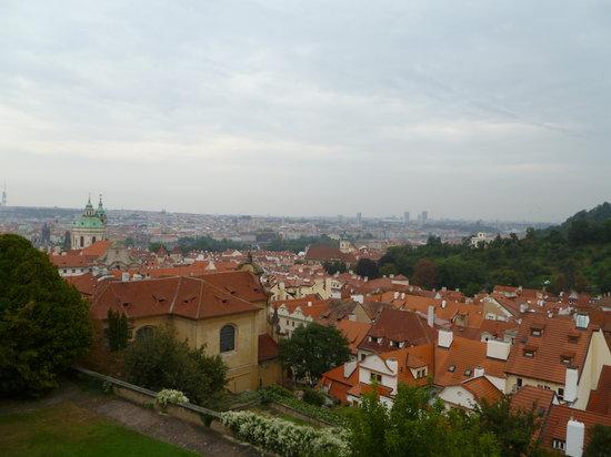 Wien a la Carte - Stadtführungen: amazing views!