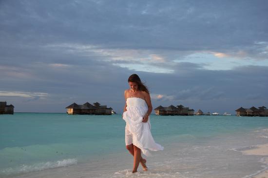 Gili Lankanfushi Maldives: beach