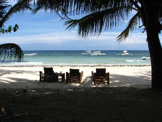Alona Tropical Beach Resort : View of the beach from the hotel
