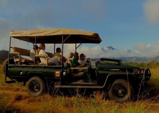 Mkomazi Game Reserve, تنزانيا: Open Game Drive