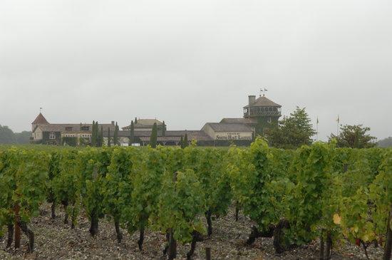Chateau Smith Haut Lafitte : Chateau & Vineyards