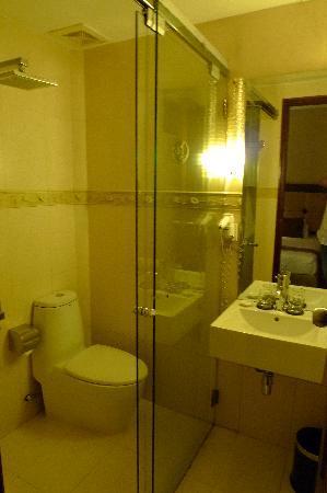 Vina Terrace Hotel: ok toilet