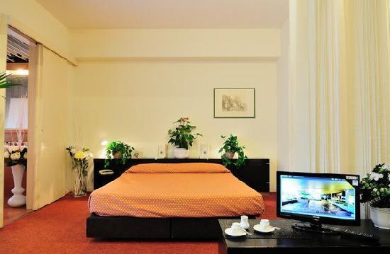 Residence Sacconi: Apartment