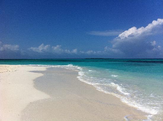 Coco Palm Dhuni Kolhu : Sand point