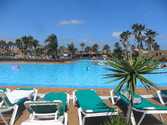 Oasis Duna Hotel: Piscina