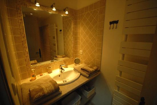 Bastide du Clos des Sources : Vue de la salle d'eau (douche + lavabo)