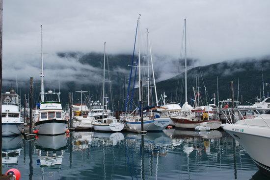 A Alaska Cruise Transfer And Tours Llc