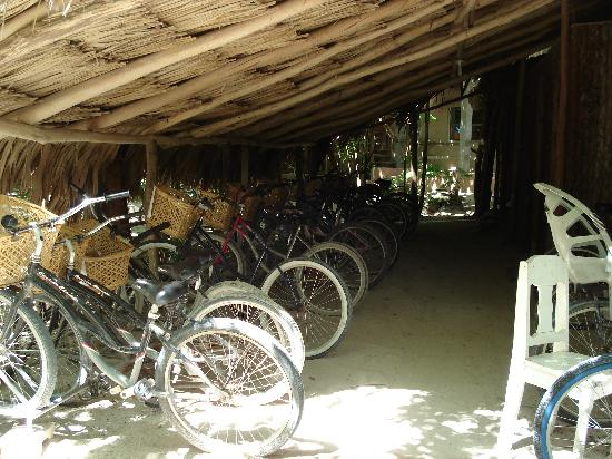 Xanadu Island Resort: Bike storage. Our method of getting around town.