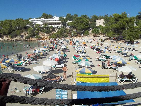 Hotel Presidente: beach