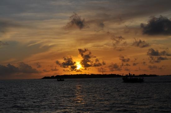 บันโดส ไอแลนด์ รีสอร์ท: dauphin coucher de soleil