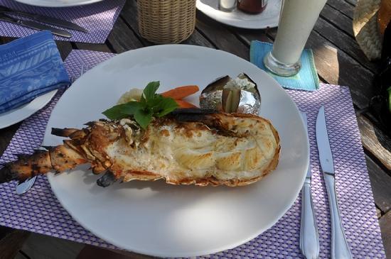 Bandos Maldives: langouste