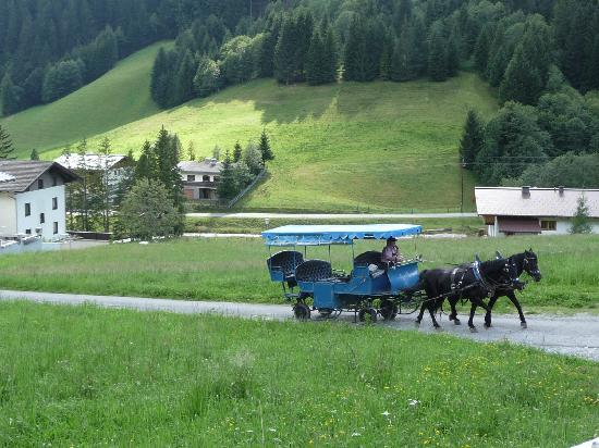 Pilzhof: Local transport. From the patio