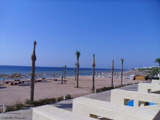 Coral Sea Sensatori - Sharm El Sheikh: View from Room 1211