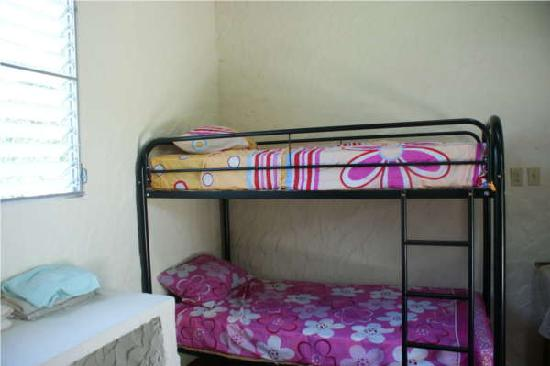 Hostel Orchid: Comfortable bunk beds