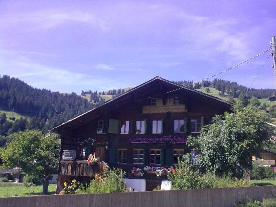 Hotel Alpenrose: vue depuis l'hôtel