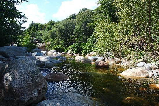 Camping Les Oliviers : La rivière du chemin botanique du camping