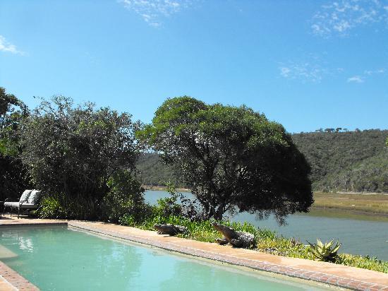Kariega Game Reserve - River Lodge: Pool area