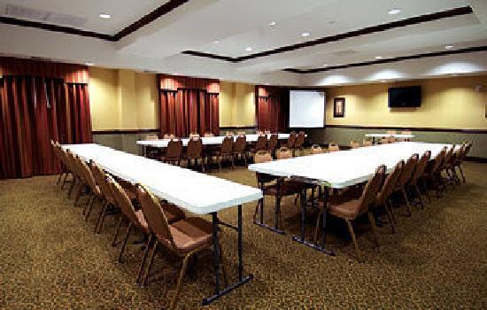 BEST WESTERN PLUS Barsana Hotel & Suites: Meeting Room
