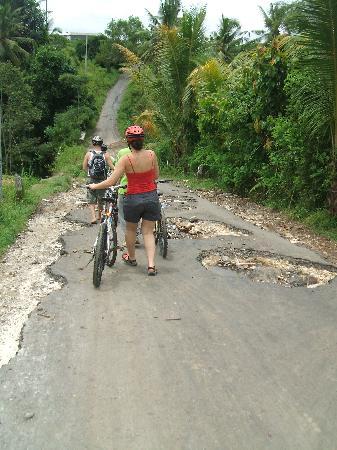 Banyan Tree Bike Tours: some interesting terrain!