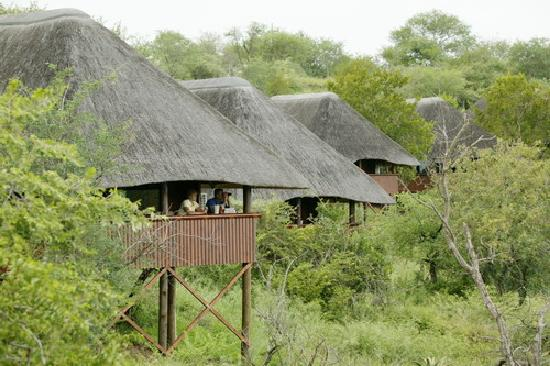 Nkwazi Lake Lodge 사진