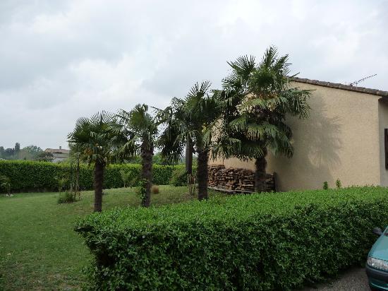 Les Palmiers De La Cite: Vista de la propiedad