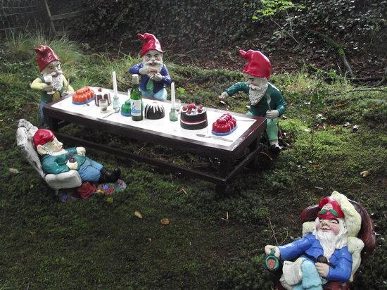 Wild Backyard Party : The Gnome Reserve & Wild Flower Garden Gnome tea party