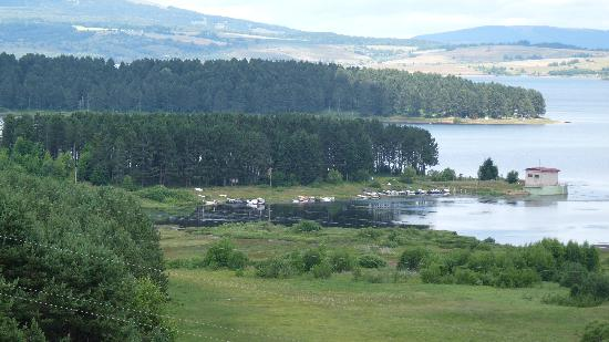 Vlasina Lake: View from the Motel at the road junction once you reach the Vlasina Plateau