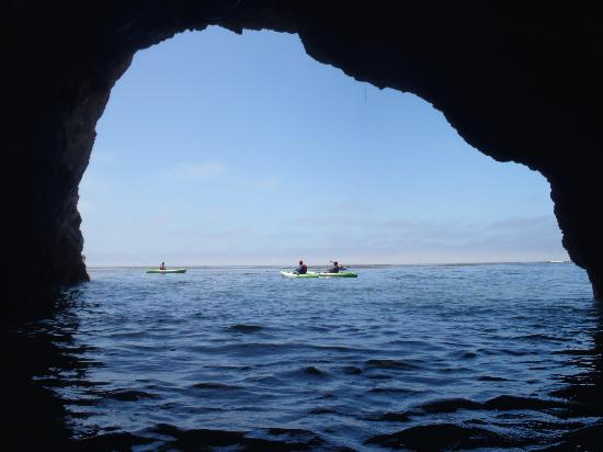 Avila Beach Paddlesports : Sea Caves in Shell Beach