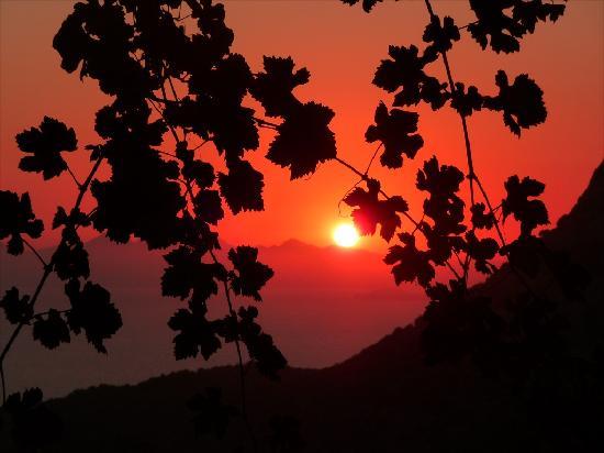 Crescent Hasirci Hotel & Villas: Dalyan sunset