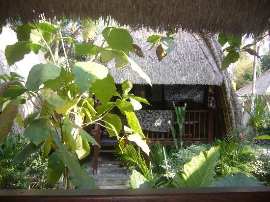 Alam Nusa Huts and Spa : View from my balcony