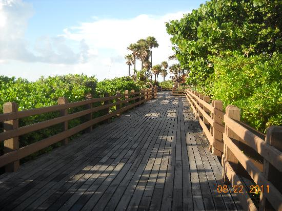 Four Points by Sheraton Miami Beach: Boardwalk behind the hotel