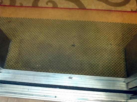 Red Lion Hotel Jacksonville: If the hallway is this dirty why would anyone want to walk on the carpet in the rooms?