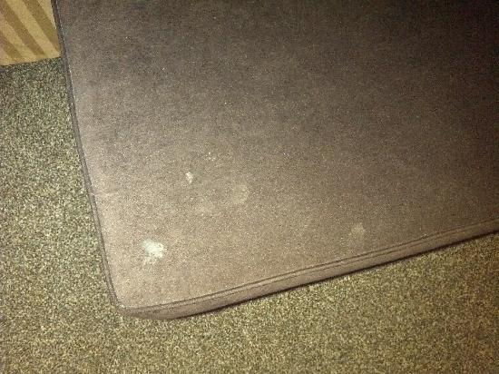 Red Lion Hotel Jacksonville: Stains on furniture