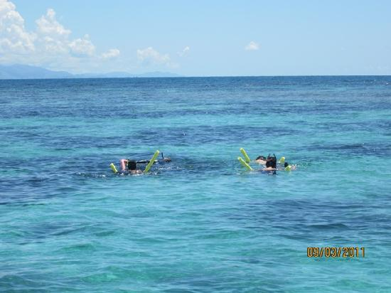 Caribbean Images Tours : Snorkeling in the Beautiful Caribbean