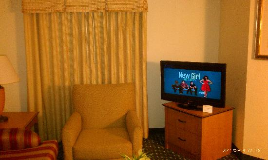 Residence Inn Detroit Novi: Flat screen