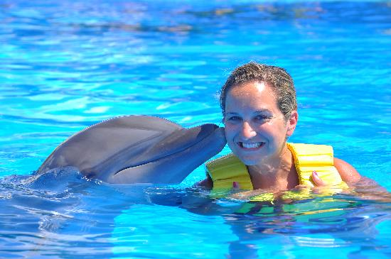 Dolphinaris Riviera Maya Park: $29 for the digital picture....