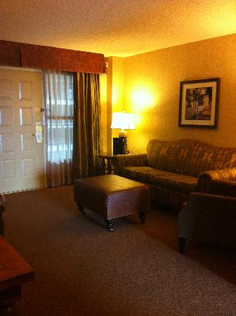 Embassy Suites by Hilton Santa Ana Orange County Airport: sitting area / sofa bed