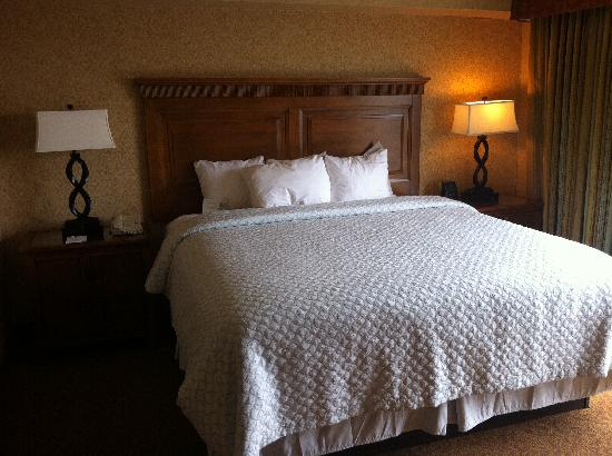 Embassy Suites by Hilton Santa Ana Orange County Airport: kng bed
