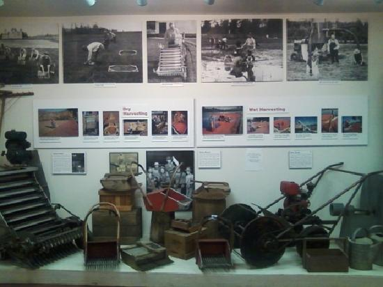 Cranberry Museum: Inside
