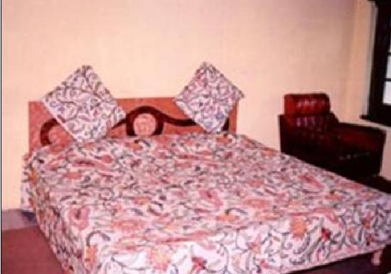 new green view hotel picture of hotel new green view srinagar rh tripadvisor co za