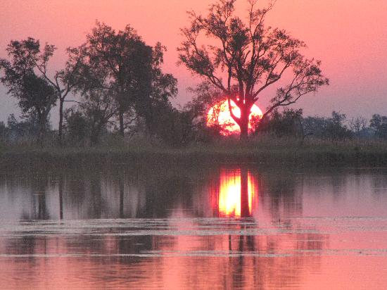 Moremi Game Reserve, Botswana: a prefect African sunset