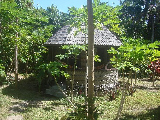 Heilala Holiday Lodge: the fale