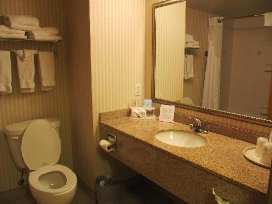 Holiday Inn Express Hotel & Suites Vernon : Room 223 Bathroom