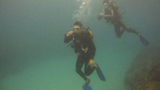 Oahu Diving: Under the sea!
