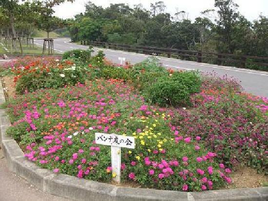 Banna Park: 園内の花