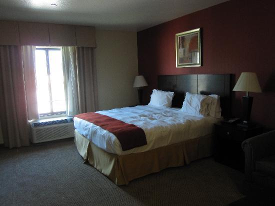 Holiday Inn Express Hotel & Suites Hollywood Hotel Walk of Fame: roompic1