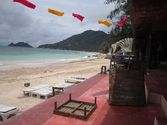 AC Resort: Strand vor Tauchshop und AC1
